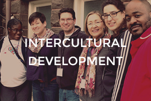 intercultural-development
